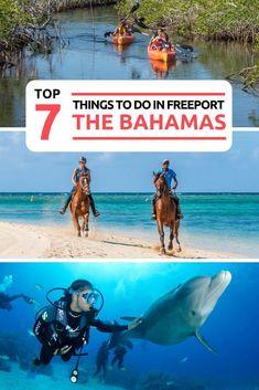 7 Unmissable things to do in Bahamas at Freeport on Grand Bahama island. Bahamas Resorts, Bahamas Honeymoon, Bahamas Beach, Bahamas Vacation, Bahamas Cruise, Vacation Trips, Sandals Bahamas, Honeymoon Ideas, Family Vacations