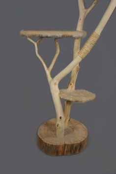 Catlounge nature wood cat tree