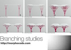 Branching Support Studies: L-System + Rabbit by morphocode