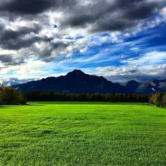 Supposed to be rainy I'll take this instead! Pioneer Peak standing tall over the Matanuska Susitna Valley. #Alaska #alaskan #alaskanblogger #pioneerpeak #matanuska #susitna #mountains #mountain #field #thatsdarling