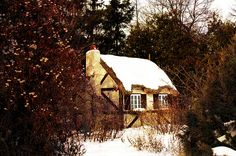 Sure...nestled in the woods...adorable.