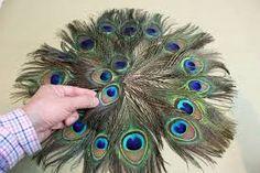 Resultado de imagen para como hacer un tutu de pavo real