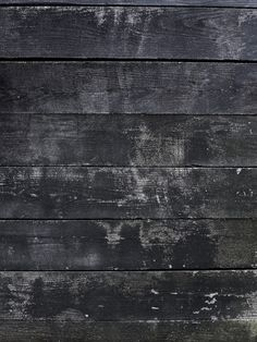 Texture : Wood / Bois