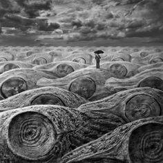 FOTOKLIMAT - Jezioro Łososi