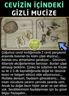 2 pieces of leaf hidden in walnut- Cevizin içinde gizli 2 adet yaprak parçası 2 pieces of leaf hidden in walnut - Health And Beauty, Health And Wellness, Health Tips, Health Care, Health Fitness, Interesting Information, Natural Treatments, Alternative Medicine, Natural Medicine