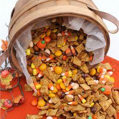 Pumpkin Spice Snack