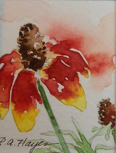 MEXICAN HAT WILDFLOWER RED YELLOW MINIATURE WATERCOLOR PAINTING....etsy rose Ann Hayes