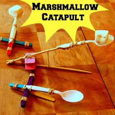 WeeWork Kids Activities: Marshmallow Catapults!