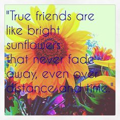 Friendship quote My photo and edit. Corinne© Buy print here: http://pixels.com/featured/friend-quote-corinne-acevedo.html