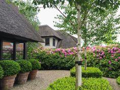 Vosselman Buiten - Tuin Aan De Plas - Hoog ■ Exclusieve woon- en tuin inspiratie.