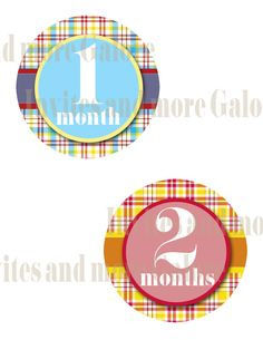 Monthly Onesie Sticker Printable 1-12. $6.00, via Etsy.  @Whitney Walker have a baby so it can wear these