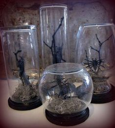Halloween decor: spo Halloween decor: spooky bug terrariums (spray paint tree branches black & get moss glass containers spiders bugs etc. from Dollar Tree). Easy cheap & Tay can probably help make them. Halloween Kostüm, Halloween Projects, Holidays Halloween, Halloween Cloche, Dollar Tree Halloween, Halloween Potions, Halloween Bottles, Halloween Labels, Halloween Ornaments