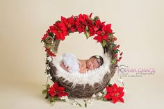 Halloween Newborn Photography, Newborn Halloween, Newborn Photography Props, Christmas Photography, Children Photography, Photography Ideas, Cute Baby Pictures, Newborn Pictures, Family Pictures