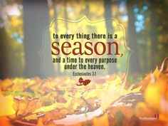 Image result for scriptures about seasons