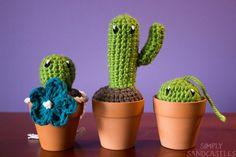Etsy の Big C // Mini Crochet Cactus by SimplySandcastles