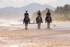 half Day Villages and Beach. Great Horse riding in the Dominican Republic. www.stable-mates.com