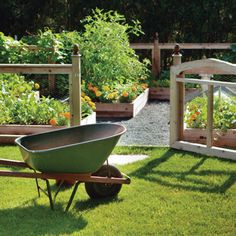 Avoid Common Gardening Mistakes - Organic Gardening - MOTHER EARTH NEWS
