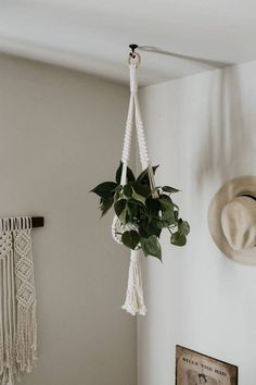 A Beautiful Selection Of Quality Sturdy And Long Lasting Macrame Plant Hangers Created Using 3 Strand Cotton Rope