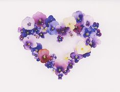 Pansy Heart watercolor note cards