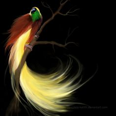 Bird of Paradise by sleepless-katith on deviantART