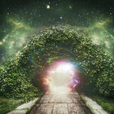 From One Vibe to Another ~ Tips on Transforming into Your Awakened Life