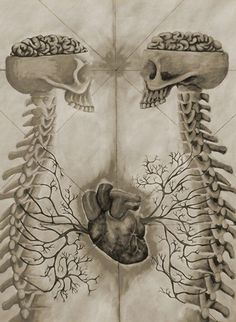 Clever female anatomy #opticalillusion. Surreal skeletal cardiovascular womb anatomical illustration.