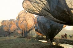 Wrapped Trees by Christo + Jeanne-Claude.  Imagine if they were blocked out.