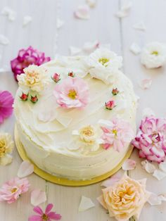 Pretty Vanilla Cake by Nonas Homemade Cakes Cupcakes, Cake Cookies, Cupcake Cakes, Pretty Cakes, Beautiful Cakes, Great Desserts, Eat Dessert First, Piece Of Cakes, Sweet Cakes
