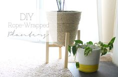 DIY Rope-Wrapped Planters
