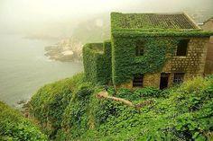 誰もが知るスタジオジブリの名作『天空の城ラピュタ』。映画の中に広がる、あの壮大な世界が実在するとしたら、その目で一度は見てみたくはありませんか?実は、中国のとある島の廃村に、まるでラピュタの世界のような、そんな見る者全てを魅了する美しい絶景が広がっていたんです。今回はその廃村についてご紹介したいと思います!