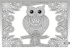 Výsledok vyhľadávania obrázkov pre dopyt omalovanky antistresove sova Survival, Bird, Owls, Coloring, Animals, Animales, Animaux, Birds, Owl