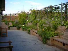 AG&P Architettura dei giardini e del paesaggio Rooftop Terrace, Terrace Garden, Shade Canopy, Outdoor Living, Outdoor Decor, Garden Boxes, Diy Pergola, Home And Deco, Small Gardens