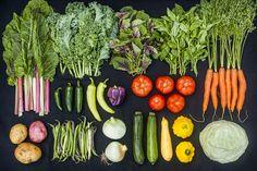 csa veggies thesproutingseed.com