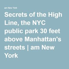 Secrets of the High Line, the NYC public park 30 feet above Manhattan's streets | am New York