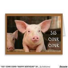 """""""SIS"""" OINK OINK=""""HAPPY BIRTHDAY"""" IN PIG LATIN SISTER'S GREETING CARD"""