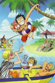 Luffy, sanji, brook, robin, nami, franky, zoro, chopper, usopp.