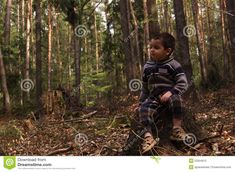 Tree Stump, Portrait Photo, Caricature, Little Boys, Faces, Portraits, Stock Photos, Wood, Image