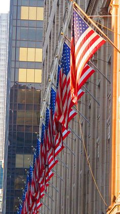 U.S. Flags, Fifth Avenue, New York City