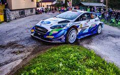 Colin Clark's 2021 Rally Croatia driver ratings – DirtFish Ford Motorsport, Arctic Circle, The Championship, Rally Car, Croatia, Clarks