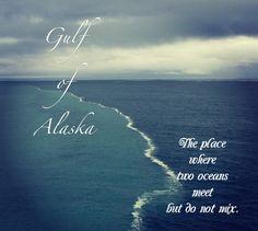 gulf of alaska two oceans meet -