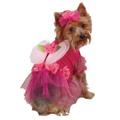 Casual Canine Flower Fairy Dog Costume at BaxterBoo