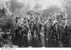 This article was originally written when the movie War Horse was released in Australia, however, it is mostly about ANZAC War Horses. World War One, First World, Modern History, Ww2 History, History Photos, Military History, Anzac Day, Military Photos, Lest We Forget
