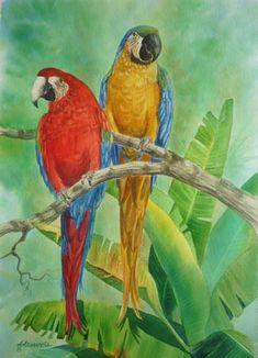 Original Watercolors by Augusto Argandona