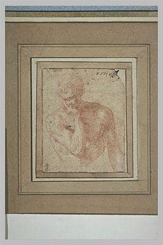 Le Primatice: Homme nu, vu en buste, la tête appuyée sur la main droite, Le Louvre