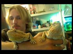 Before YOU buy a Bearded Dragon, Watch THIS video!