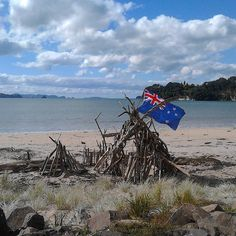 Found this while walking back from town in #whitianga  today
