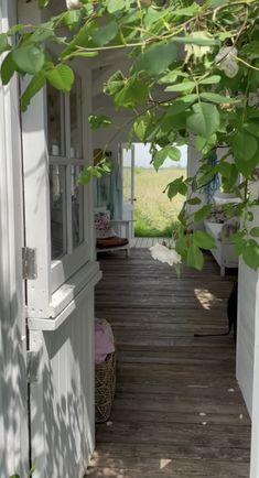 Dream Big, Happy Life, Simple, Nest, Plants, Live, The Happy Life, Nest Box, Plant