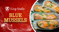 Mesmerizing Facts about Blue Mussels: We Bet You Don't Know