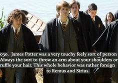 Harry Potter Head Canons - It would make sense, given our glimpses of them.