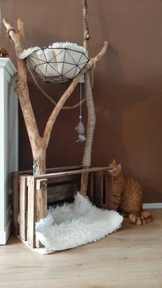 Cat Crafts, Diy And Crafts, Diy Cat Tree, Cat Playground, Cat Enclosure, Cat Room, Cat Decor, Pet Furniture, Cat Wall